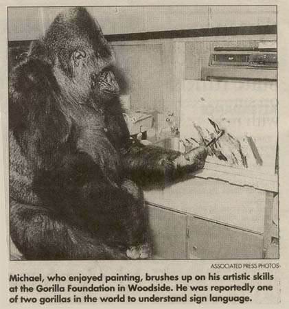 research paper gorillas